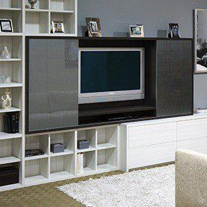 Living Room Closet Ideas Storage Cabinets